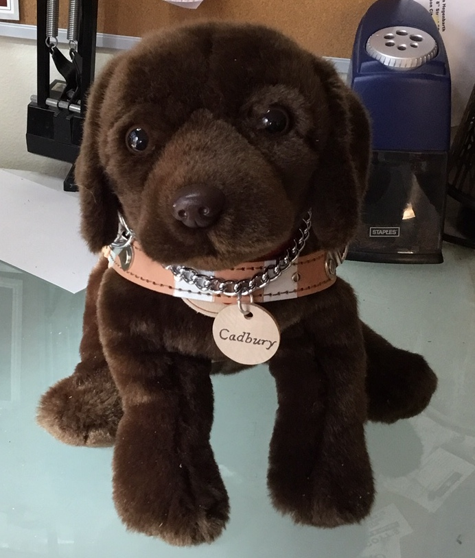 GDUI 2019 Convention Raffle Tickets - Guide Dog Users, Inc